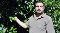 "CHP'li Tezcan ""Limon Üreticisi Zor Durumda"""