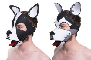 regulation dog mask