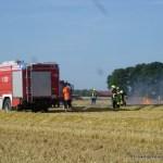 Freiflaechenbrand Dammer Str. Borringhausen 17.07.15 04