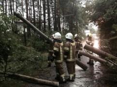 Mehrere Bäume auf Straßen im Gemeindegebiet Mieming, Foto: Freiwillige Feuerwehr Mieming