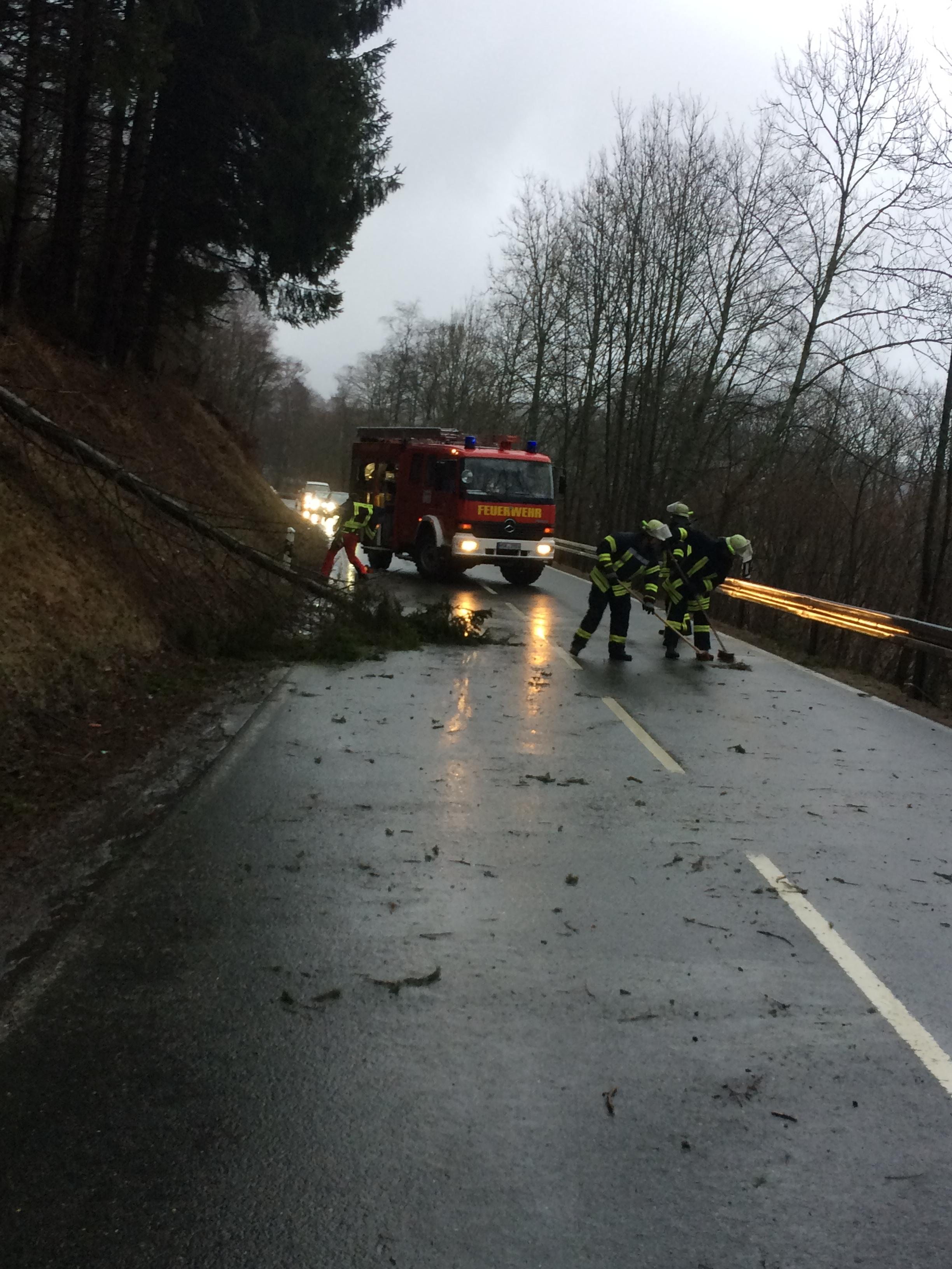 Umgeschtürzter Baum blockiert Fahrbahn