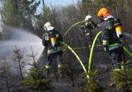20190420 Christbaumbrand zu Ostern IiTXI4n9dC