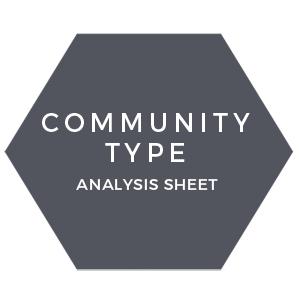 Community type analysis sheet