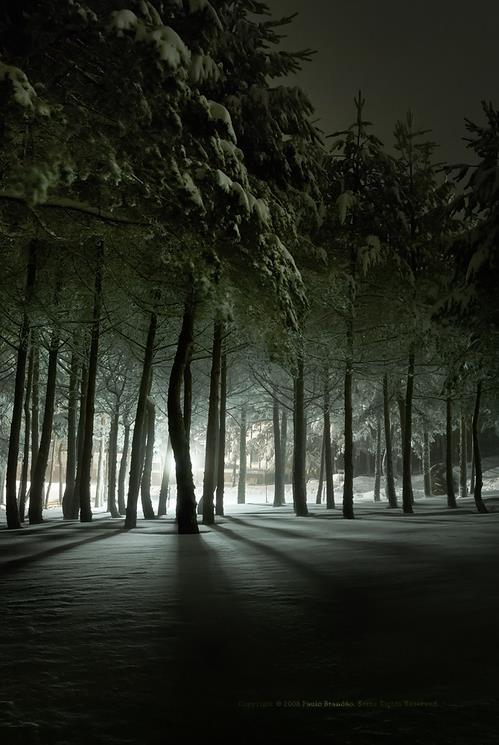 FrozenLight