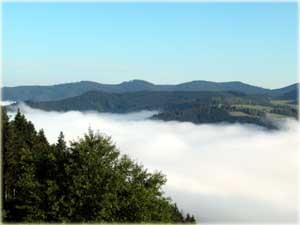 Ferienwohnung Schwarzwald  Oberwolfach  Reit und