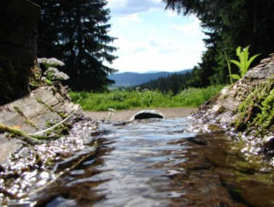 Am Breiten Brunnen