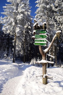 Winterwandern am Rennsteig (Tourismus GmbH Oberhof)