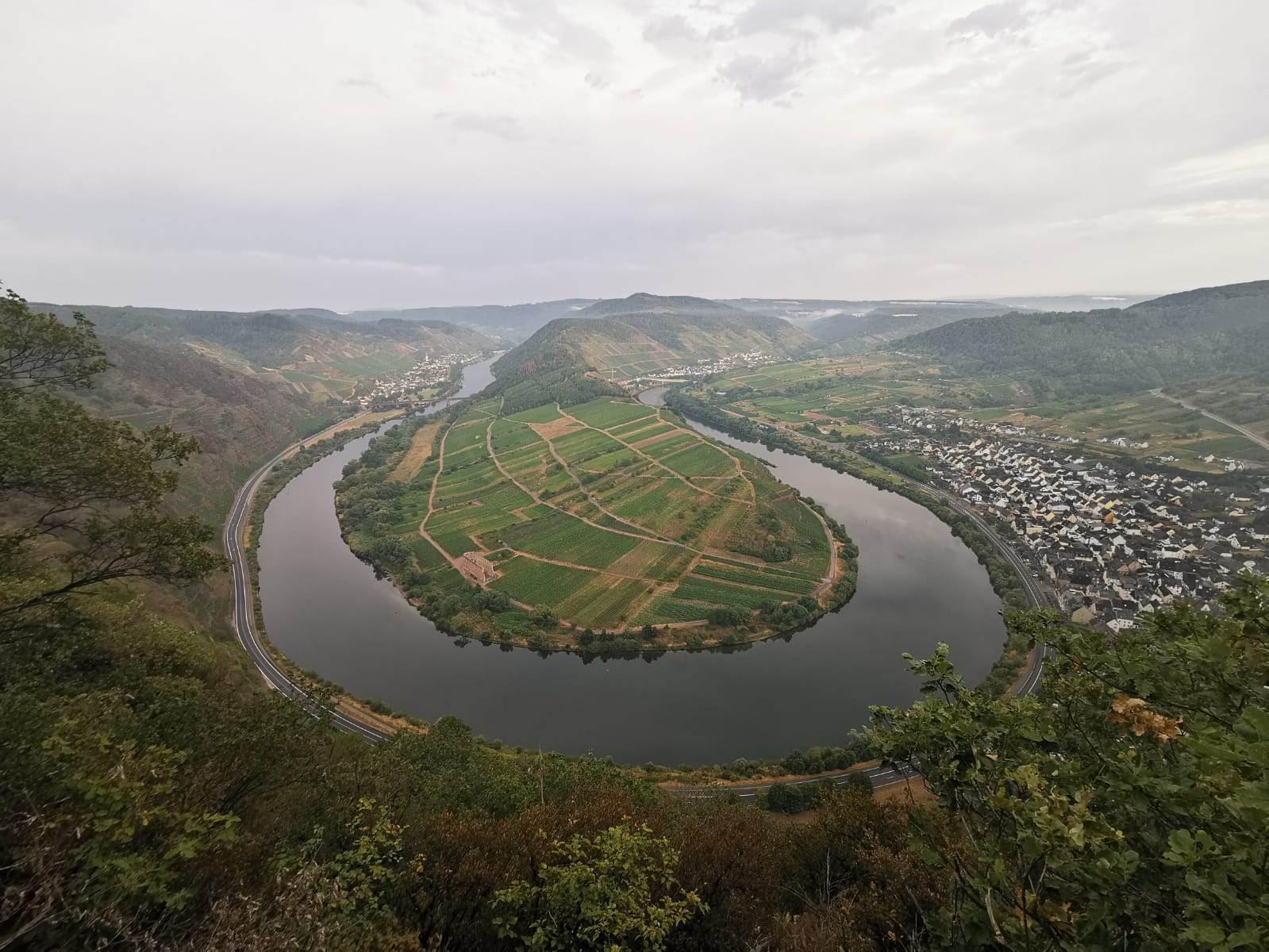 Ausblick vom Calmont auf die Moselschleife und Bremm