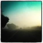 patch-fog_1.jpg