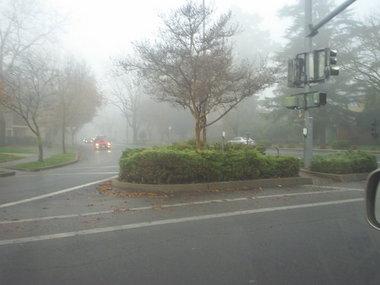 fog9amc.JPG