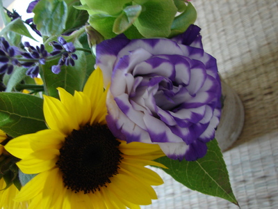 moreorganicflowers.JPG