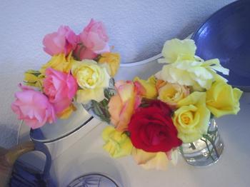 rosesareroses.JPG