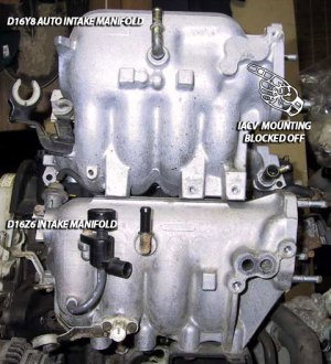 d16y7 w y8z6 manifold question  HondaTech  Honda