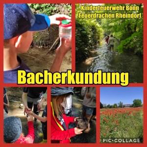 Bach-Erkundung der Kinderfeuerwehr Bonn-Rheindorf (Collage)