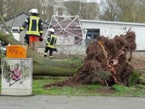 Löscheinheit 15 - Rheindorf der Freiwilligen Feuerwehr Bonn beseitigt Sturmschäden in Auerberg