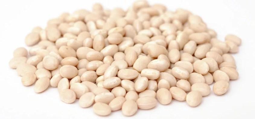 Michigan Navy Beans