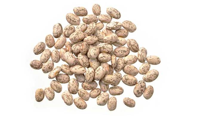 Dry Edible Bean Market in Flux