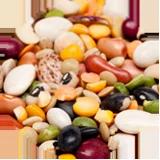 Dry Bean Market News week of May 7