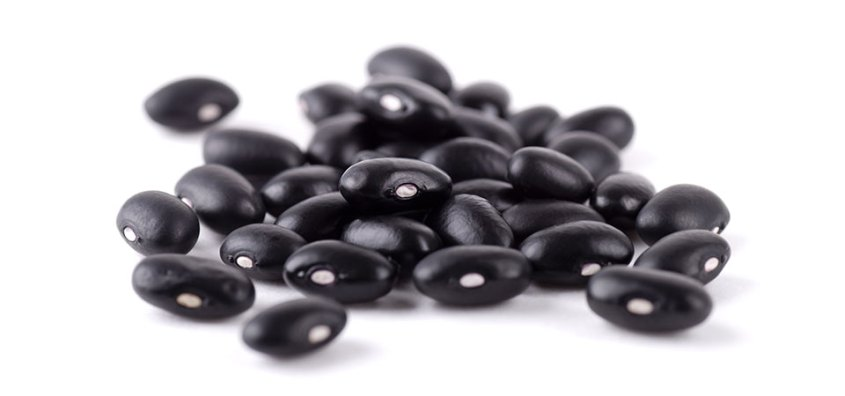Michigan black beans