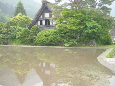 6_shirakawago22_jpg