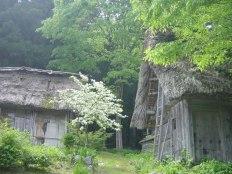6_shirakawago23_jpg