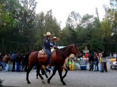 Police montée à cheval près du parc Almeda