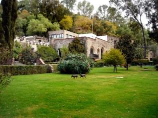 Vue sur la demeure de Dolores Olmedo, tranformée en musée regroupant un nombre important d'oeuvres du couple Rivera Kahlo