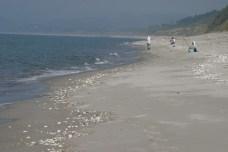 La plage toujours. Coups de soleil memorables.