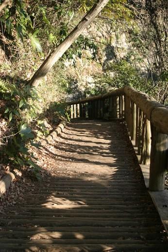 Petit chemin ombrage, d'ou on peut admirer le petit lac.