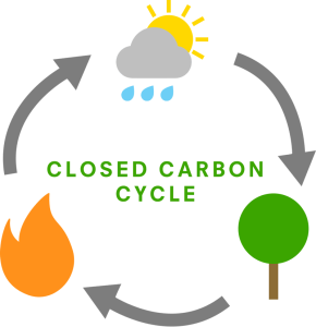 closed carbon cycle diagram