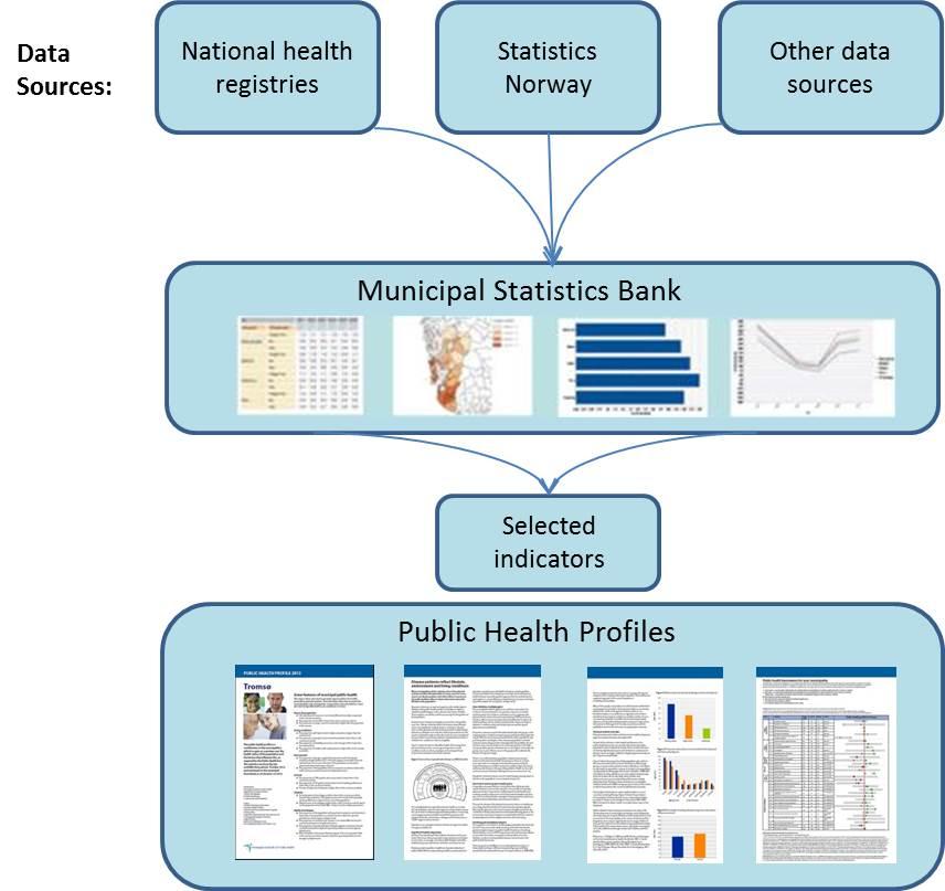 public health profiles a