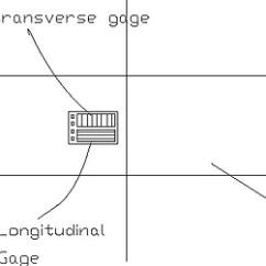 Venn Diagram Of Transverse And Longitudinal Waves Area Lighting Research Photocell Wiring Strain Related Keywords - Long ...