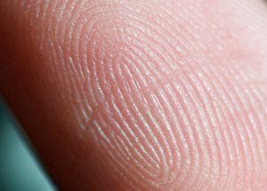 The Secure Communities program sends fingerprints to a DHS database to check for immigration status. (Photo: Jeff Eaton/flickr)