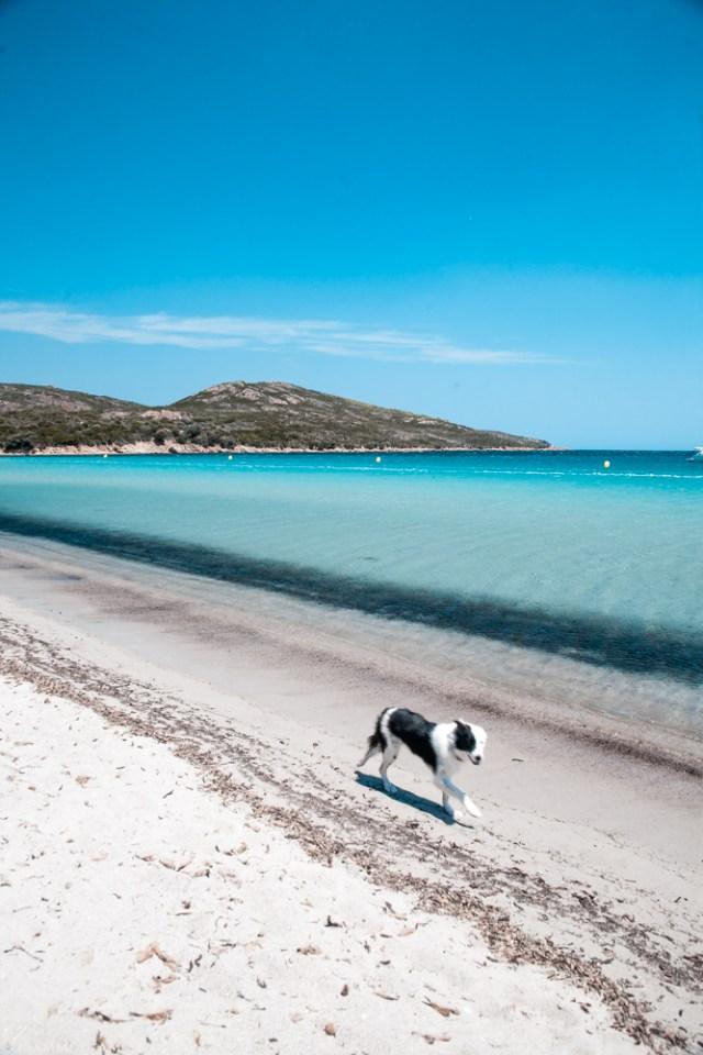 Spiaggia di Balistra - Corsica