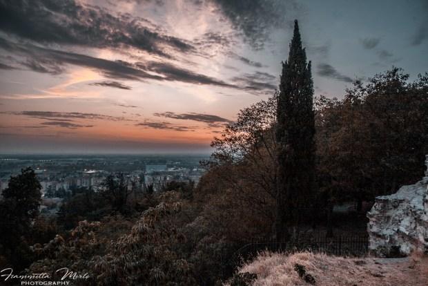 Parco del Voltone di Tortona