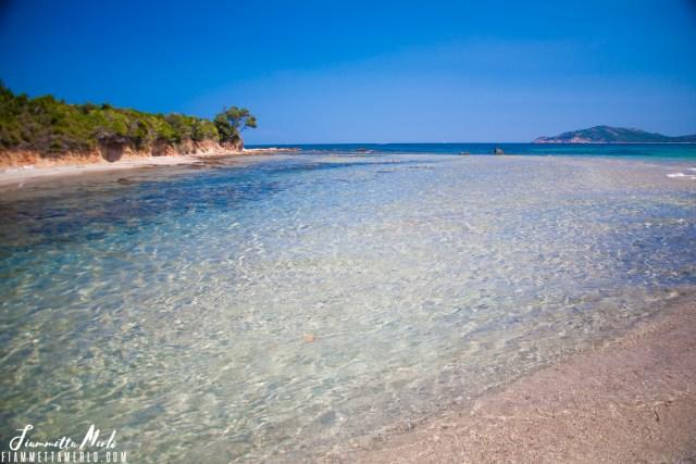 Balistra Corsica