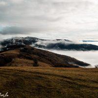 Escursione al monte Giarolo: tra faggete e larici incantati