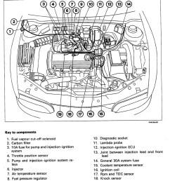 technical 1997 fiat brava 1 4 12v won t start help the fiat forum rh fiatforum punto mk2 fuel injector diagram reinvent your wiring diagram  [ 744 x 1086 Pixel ]
