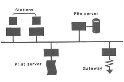 local area network lan basic components The design, implementation, and configuration of local area networks students  install the necessary hardware and software to set up a lan server with  and  apply current technical concepts and practices in the core information  technologies  principles of computer networking components common to all  client server.
