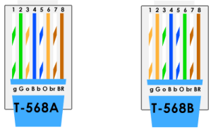 Cat5e vs Cat6 Cable  Which do You Choose?