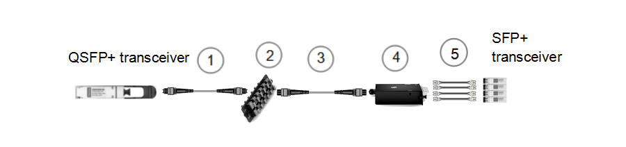 8-fiber to 2-fiber interconnect