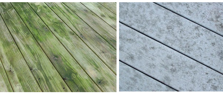 How To Prevent Algae Growth On Decks