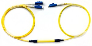 Y cable single mode