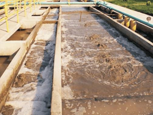 tratamiento de agua negras con plantas en fibra de vidrio