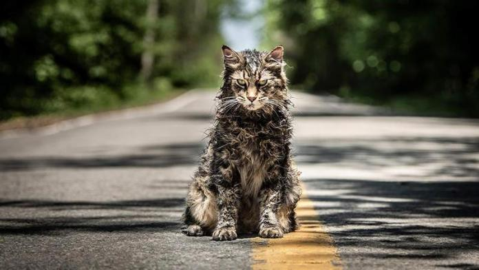 stephen-king-new-pet-sematary-movie-review