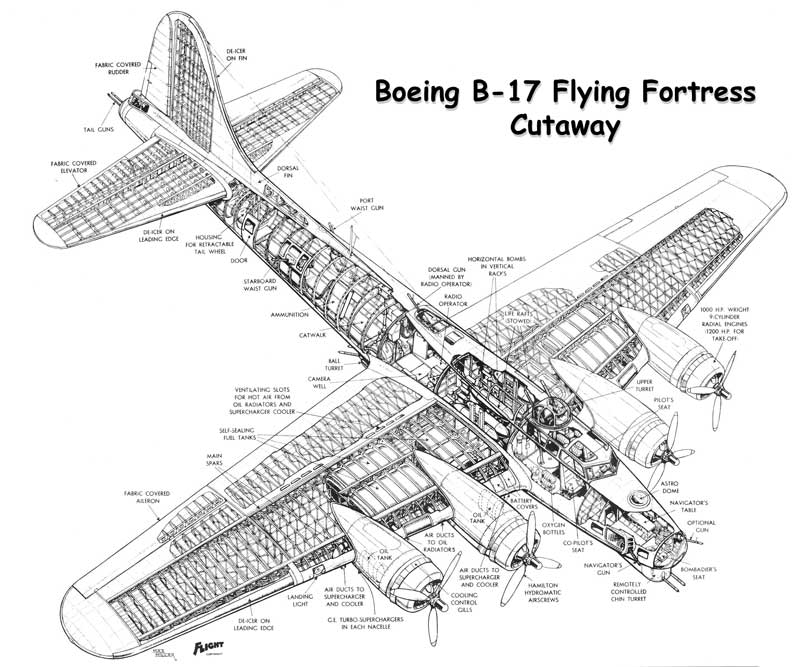Modify the B-17 into night bomber/low altatude streak bomber?