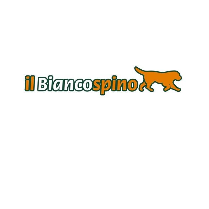Logo Il Biancospino