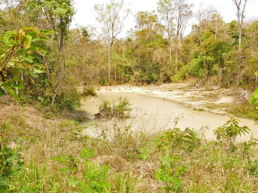 Water hole, Kaeng Krachan NP