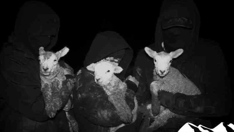 Animal rights extremists release terrorist handbook