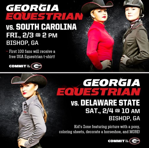 Uga Women S Equestrian Georgia Slides To Seventh In Ncea